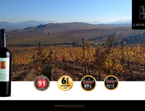 Vino Petit Verdot Cabernet Franc: Premiado por Catad`Or Wine Awards